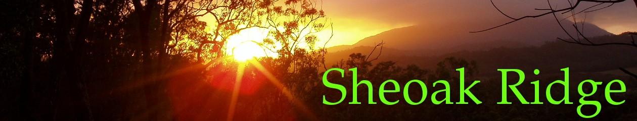 Sheoak Ridge