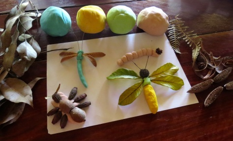 Dr Claire's Bugs'n Stuff workshops use a variety of teaching methods aimed to stimulate your students to learn about living things and the environment.
