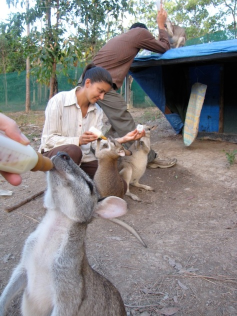Sam and Aurelie at feeding time