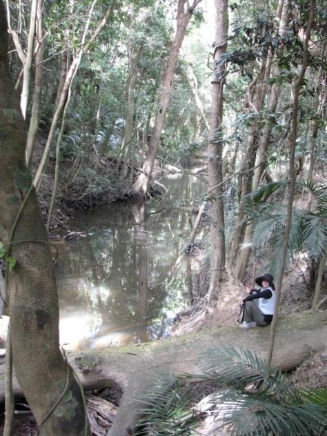 Enjoy a peaceful walk along the banks of Rifle Creek.