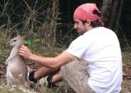Bruno and Chopper hard at work :-)