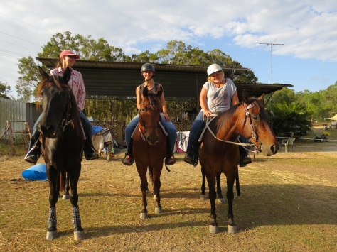 We can organise a horse-riding experience on a nearby farm. This is an optional extra activity.