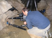 Cameraman Kevin Flay working on footage for the BBC's Life in the Undergrowth: Silk Spinners